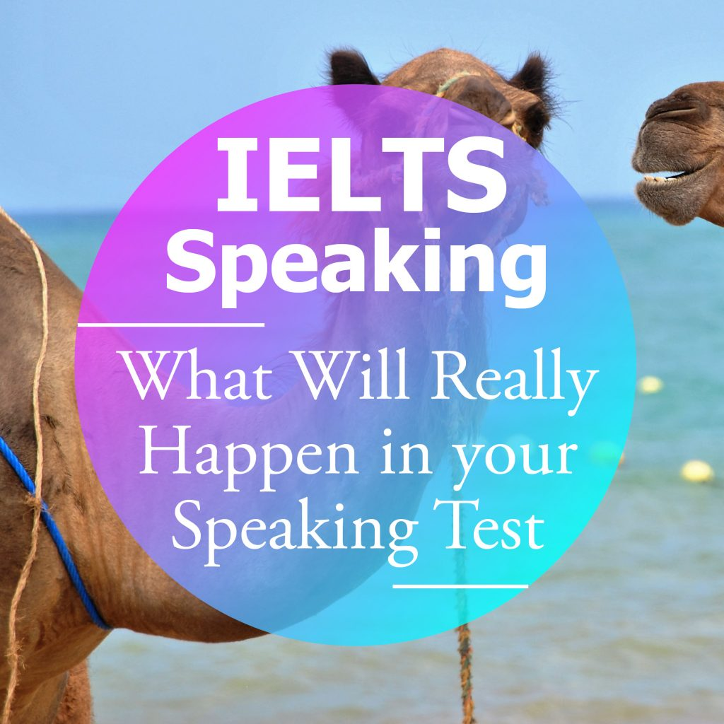 IELTS Speaking: What Will really Happen in your Speaking Test