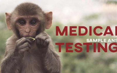 IELTS Writing Task 2 Sample Answer: Medical Testing (Real Test)