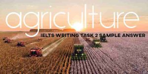 IELTS Essay Agriculture
