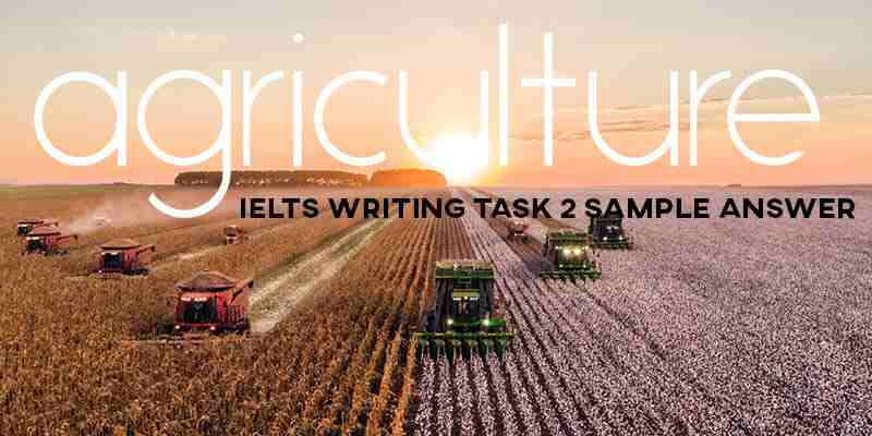 IELTS Writing Task 2 Sample Answer: Agriculture (Cambridge IELTS 13)
