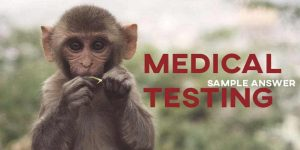 IELTS Sample Answer Medical Testing