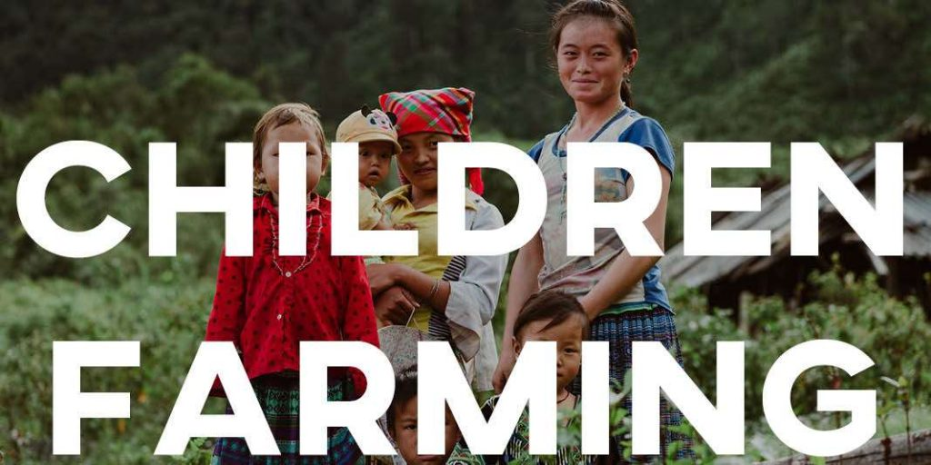 IELTS Essay: Children Farming