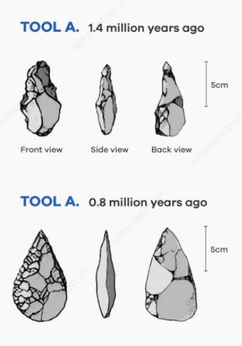 IELTS Essay Task 1: Prehistoric Tools