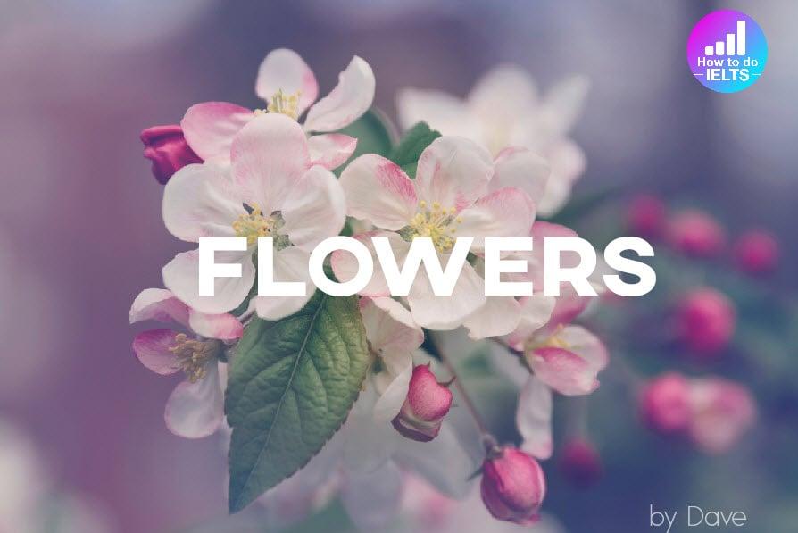 IELTS Speaking: Flowers